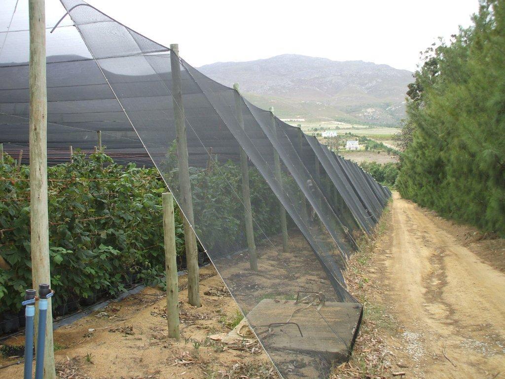 農業用風対策アンカー