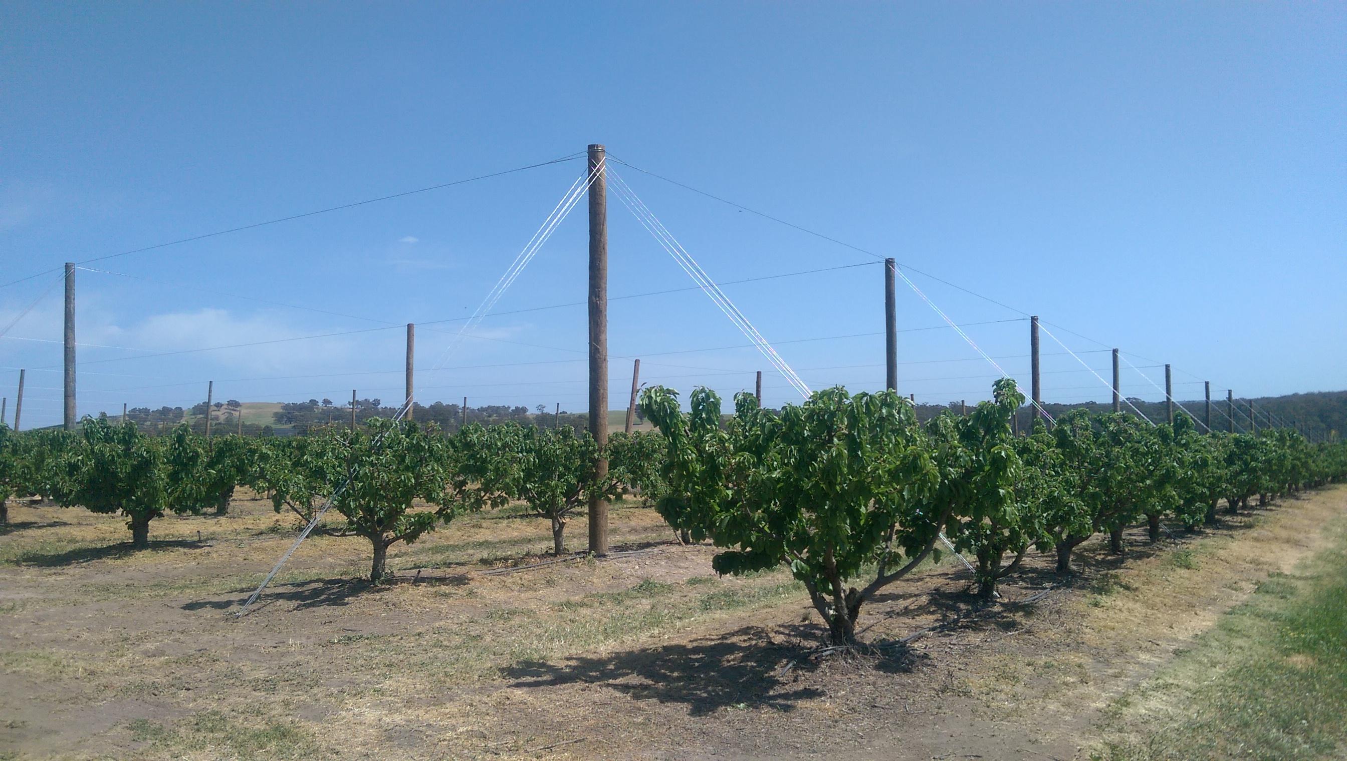 農業支柱用アンカー