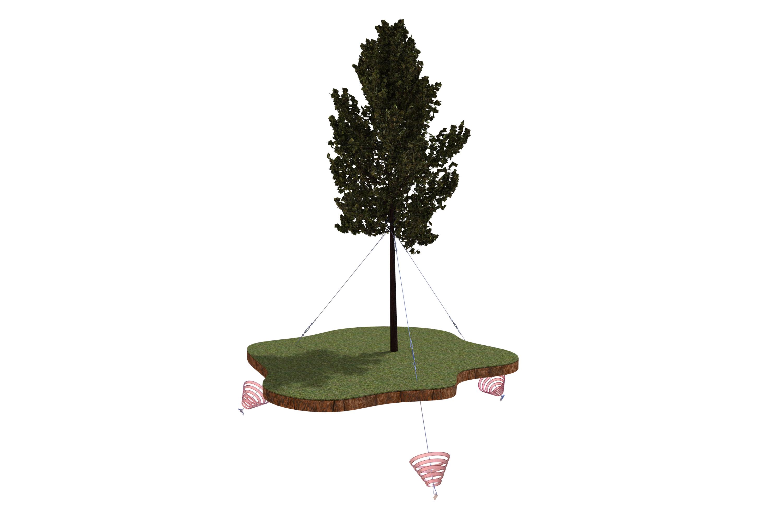 樹木固定アンカー